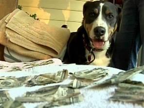 dog-eats-money.jpg